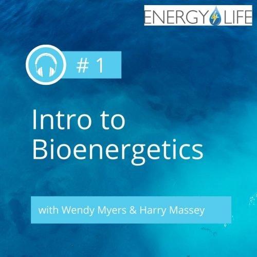 Energy-4-Life-Podcast-1-image