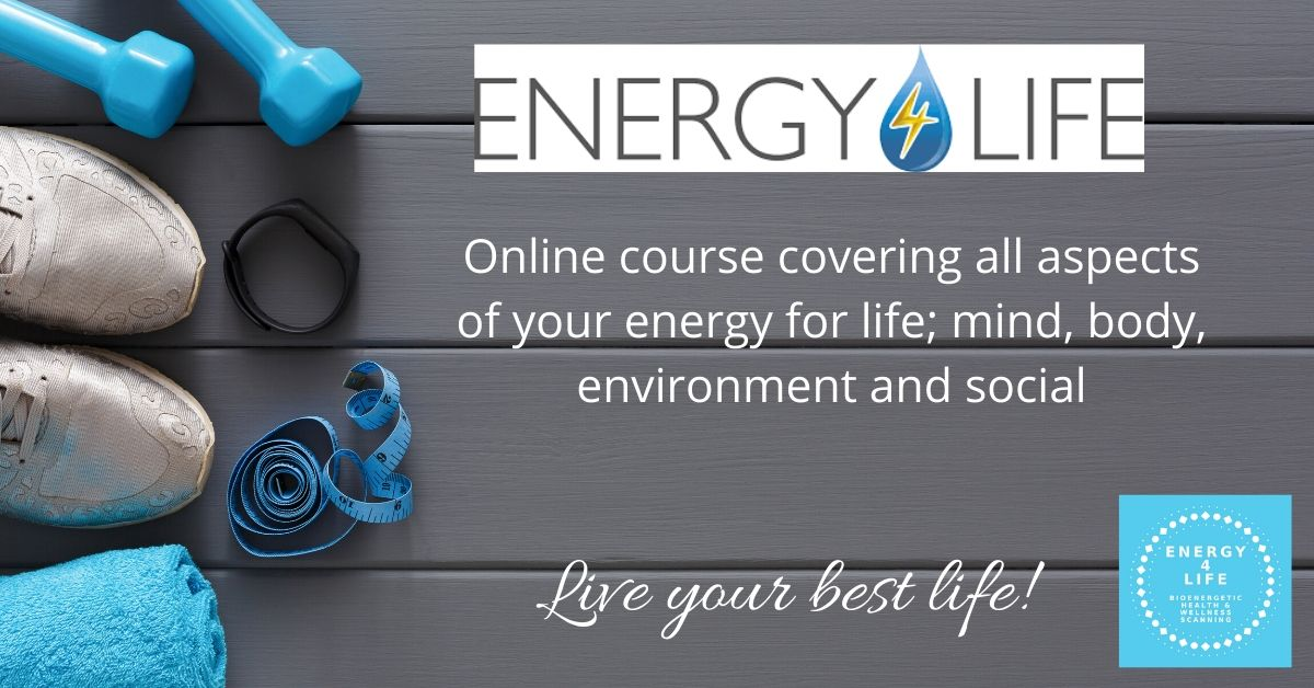Energy-4-Life-Events-/-Training-image