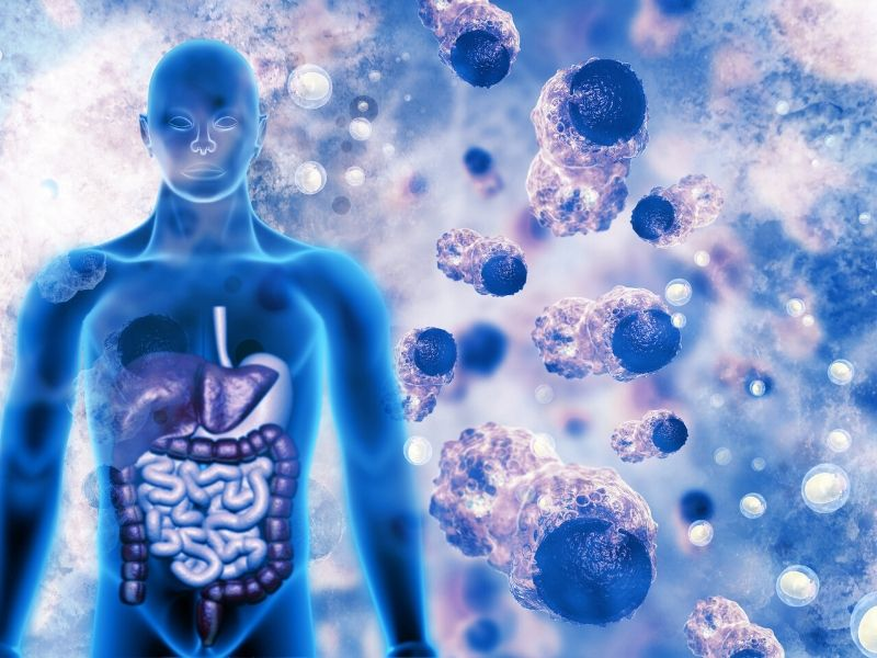 Energy-4-Life-Infoceuticals-Cell-image