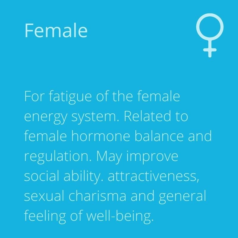 Energy-4-Life-mihealth-PEMF-therapy-female-image