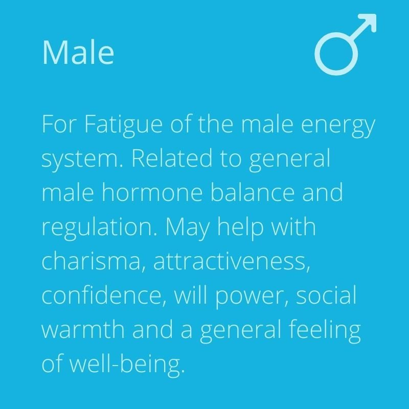 Energy-4-Life-mihealth-PEMF-therapy-male-image